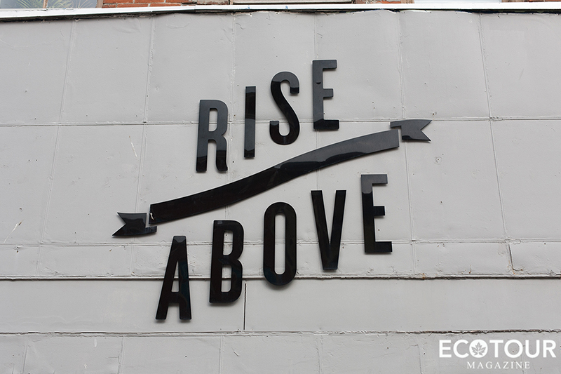 Rise Above Vegan Restaurant St Catherines