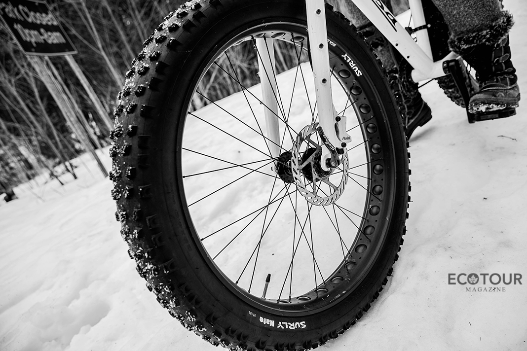 Top 3 Reasons to Ride a Fat Bike this Winter | Algonquin Park