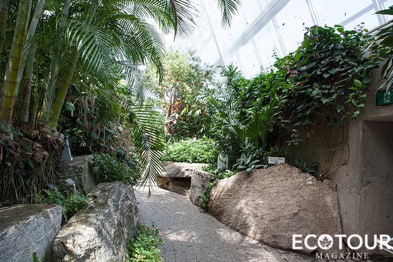 Niagara Falls Butterfly Conservatory